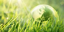 A close up shot on grass with a tiny, translucent globe resting on the ground.