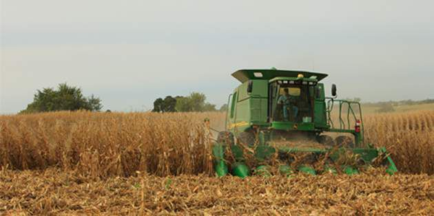 Fall herbicide applications can make spring planting easier.
