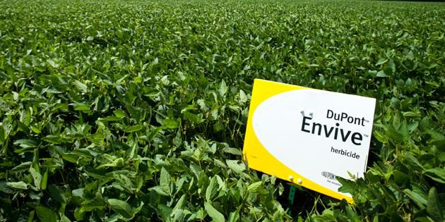Envive® herbicide provides long-lasting control.