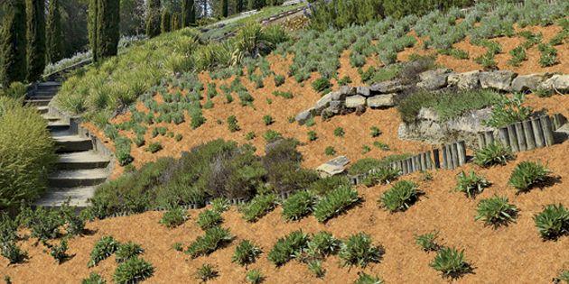 Böschungsmatte Schützt Böschungen Vor Unkraut Und Bodenerosion