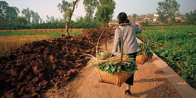 NationalGeographic_Food_1215833_FarmerWalking_630x315