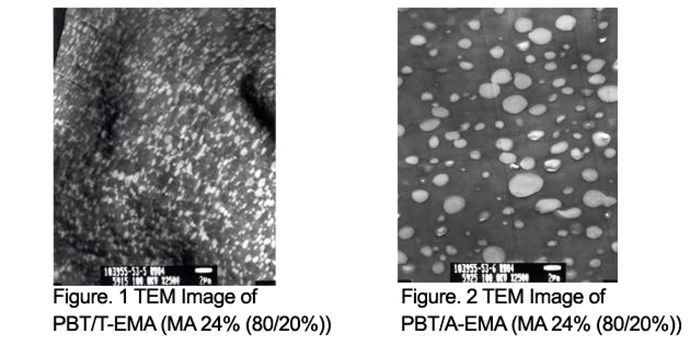 Resins Functionality; shown: TEM images of PBT/T-EMA and TEM image of PBT/A-EMA