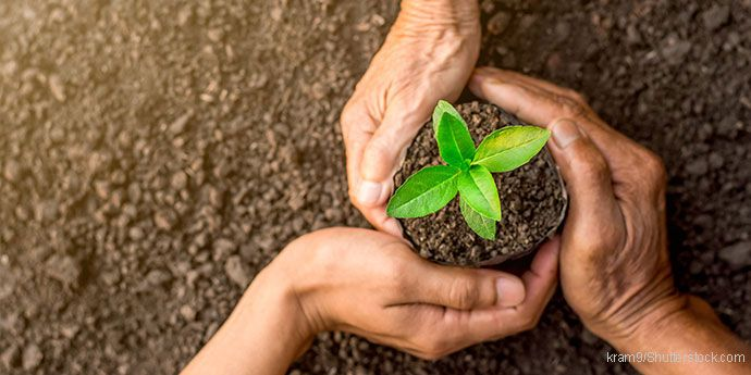 Sustainability-shutterstock_690x345