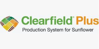 clearfield_thumbnail