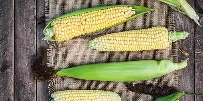 corn-on-table_709x355