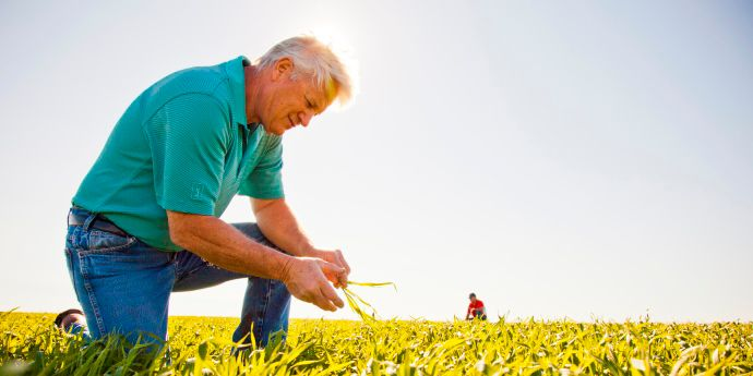 Crop Protection Plus program helps growers manage uncertainty