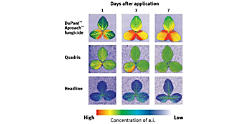 Foliar Health Basics: Fungicide Use Effect on Yield | DuPont USA