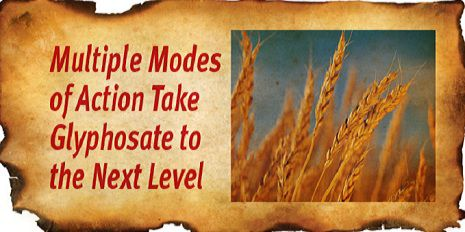 Multiple modes of action, take glyphosate to the next level.