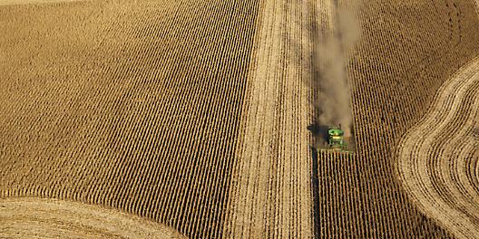 Картинки по запросу http://agriculture-info.ru