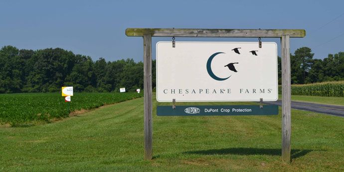 Chesapeake Farms®