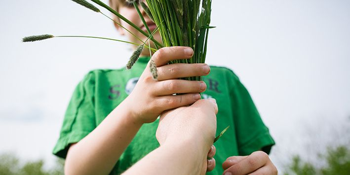 A hand gives a young child some green plant stalks.