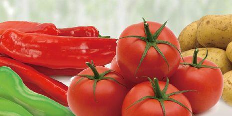 杜邦™抑快凈®為種植者帶來了色澤鮮鮮、果形健康的辣椒