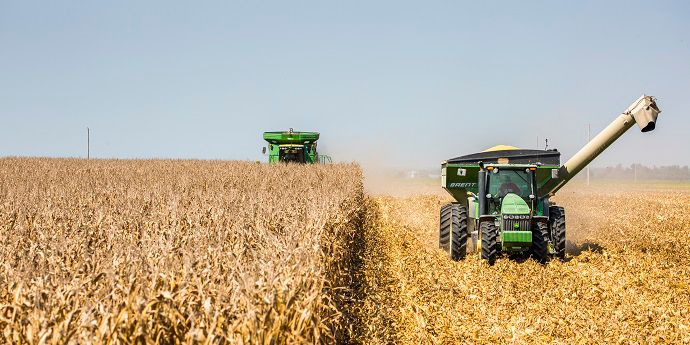 Fall Crop Planning: 4 Tips for Next Season Success
